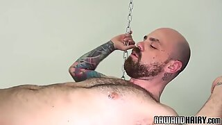 Inked bear bottoms cock for bareback sex